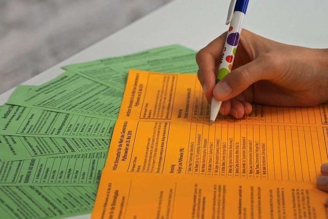 Wahlpanne kostet Grünen einen Sitz im Kreistag