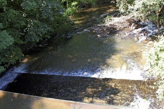 Lohnt sich das Wasserkraftwerk?