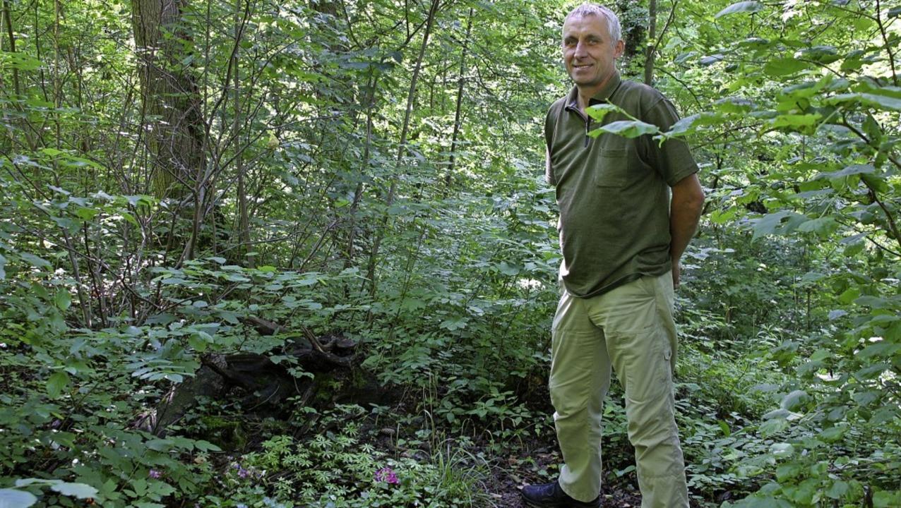 Förster Arno Umhauer an einer vorbildlichen Grabstätte im Bestattungswald.    Foto: Christiane Franz
