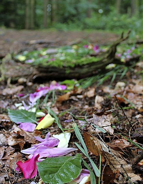 Rosenblätter mischten sich mit Materialien aus dem Wald.  | Foto: Annika Sindlinger