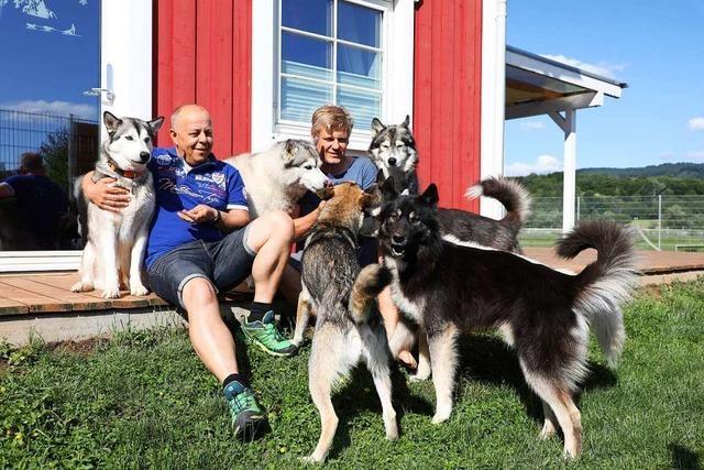 Im Sommer haben die sechs Huskies eines Friesenheimer Paars Urlaub