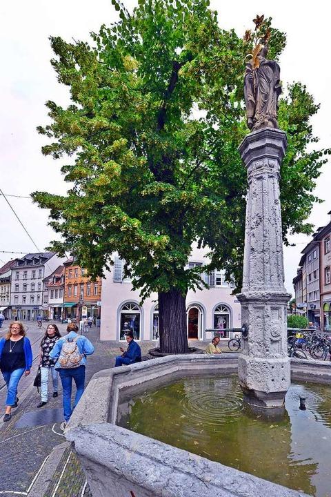 Wasser aus dem Oberlindenbrunnen für die Linde  | Foto: Michael Bamberger