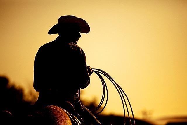 Betrunkener Mann reitet mit Pferd in Festzelt und ohrfeigt einen Gast