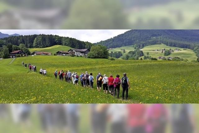 Sonnige Wandertage in Ruhpolding