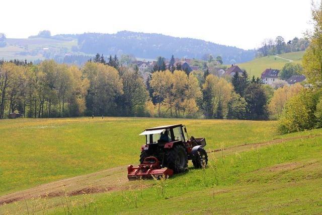 Wie ein Schwarzwälder Landwirt unter der Agrar-Bürokratie leidet