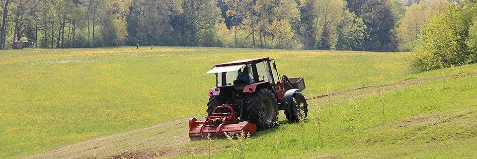 Wie ein Schwarzwälder Vollzeit-Landwirt unter der Agrar-Bürokratie leidet