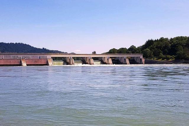 Frau mit Rettungsring aus dem Rhein gerettet