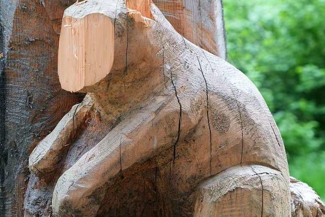 Baumfiguren eines Waldkindergartens zerstört – mit der Axt