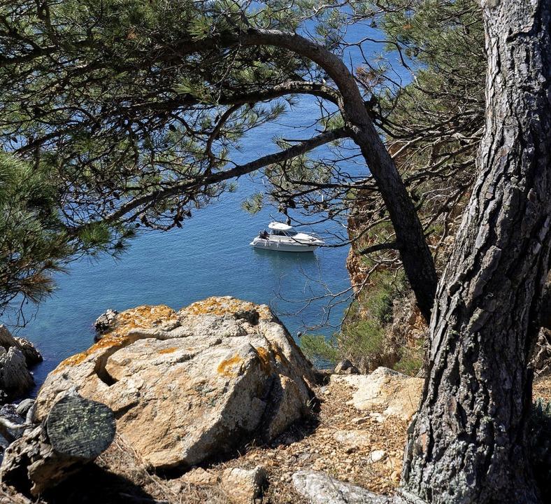 Wandern mit Aussicht: der Cami de Ronda    Foto: Andreas Drouve (dpa)