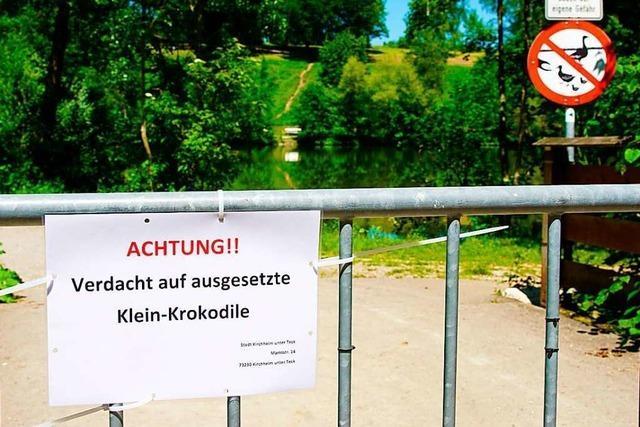 Suche nach drei Krokodilen hält Kirchheim unter Teck in Atem