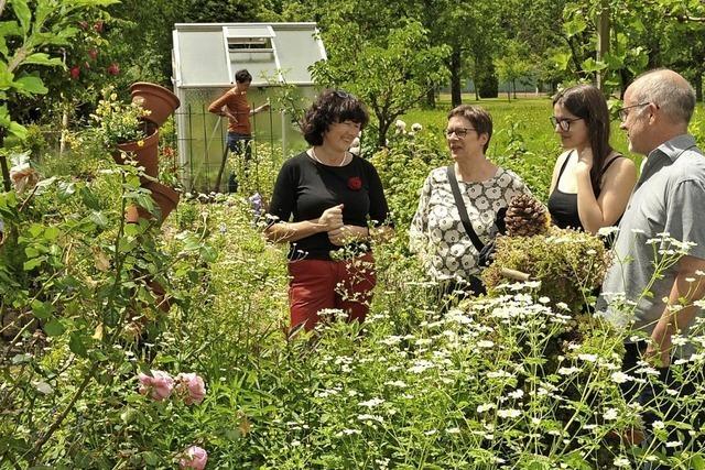 Blumenpracht, Beerenobst und Gemüsesorten