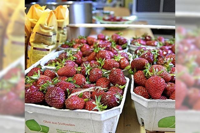 Vier Mütter, acht Kinder und ein Berg Erdbeeren