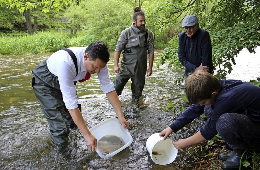 Fischerei-Verband,Waldkircher Schüler ...ei Monate alte Lachse in die Elz ein.     Foto: Karin Heiß
