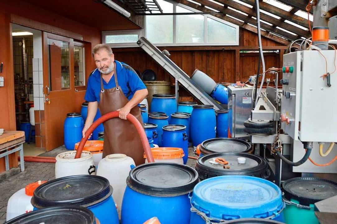 René Wenk zwischen seinen Maischefässern  | Foto: Horatio Gollin