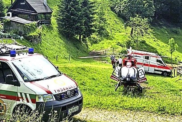 Rettung eines verletzten Waldarbeiters