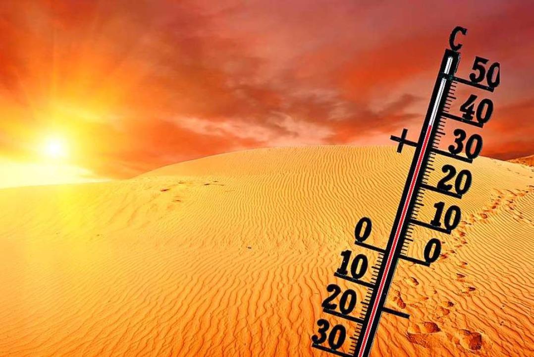 &#8222;36 Grad und es wird noch heißer...6 Grad&#8220; von 2raumwohnung. </ppp>  | Foto: Fyle