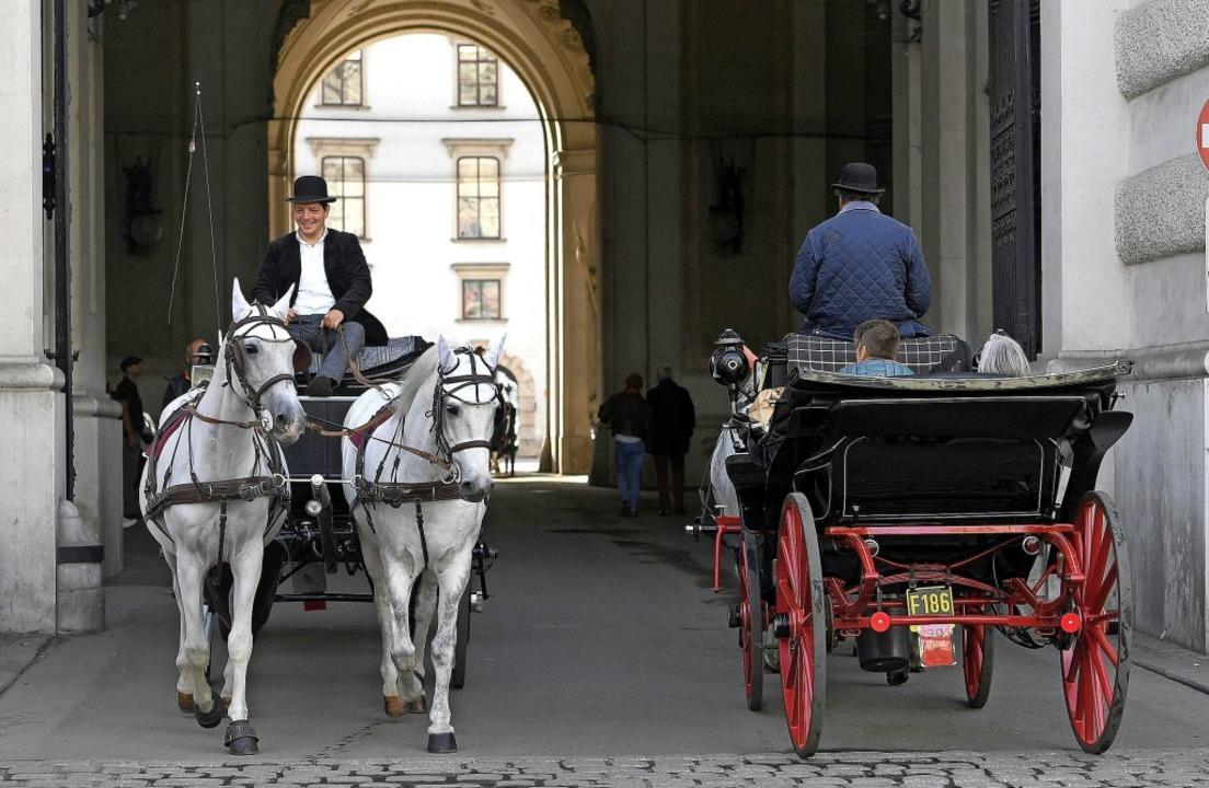 Von  Touristen geschätzt, von Tierschü...ekämpft: Fiaker in der Wiener Altstadt    Foto: Helmut Fohringer (dpa)