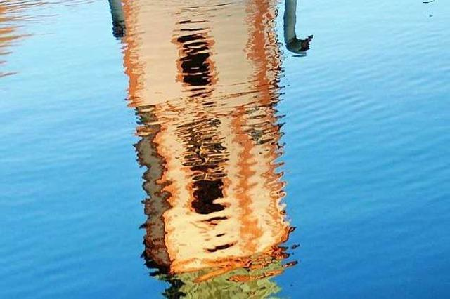 Umweltfrevel am Schwanenweiher in Zell