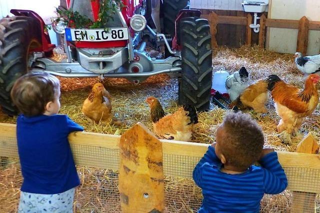 Denzlinger Kleintierzüchter möchten wieder mehr in den Blickwinkel rücken