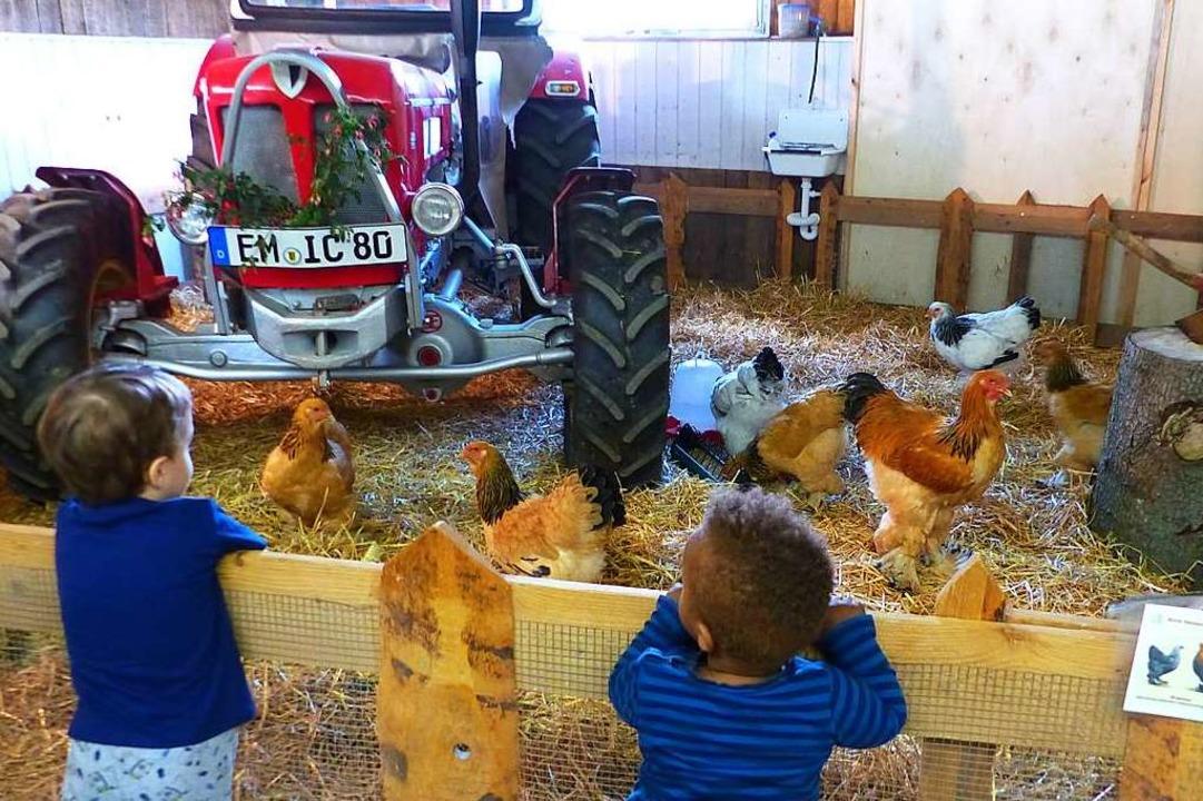 Die Kinder waren fasziniert von den Tieren.  | Foto: Claudia Bachmann-Goronzy