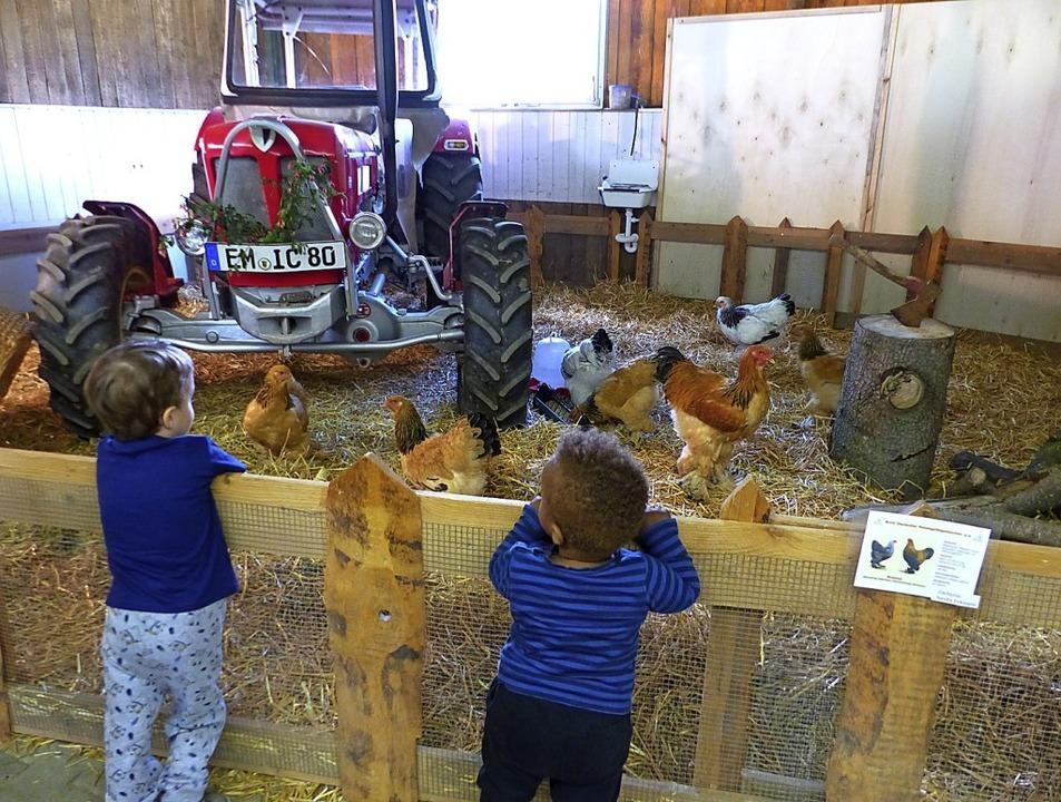 Die Kinder waren fasziniert von den Tieren.     Foto: Claudia Bachmann-Goronzy
