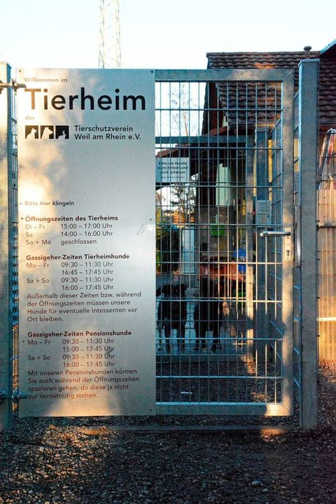 Im Tierheim in Weil am Rhein stehen teure Sanierungsarbeiten an (Archivbild).  | Foto: Hannes Lauber