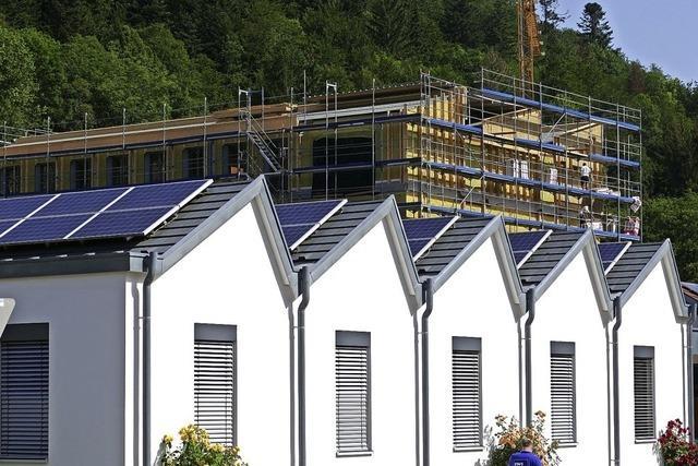 Elektrizitätswerke wachsen weiter