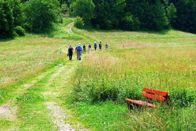 Wandern mit Sechs-Gänge-Menü