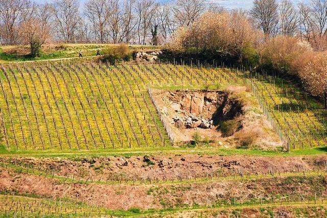 Regierungspräsidium lehnt zweiten Steinbruch in Bötzingen ab