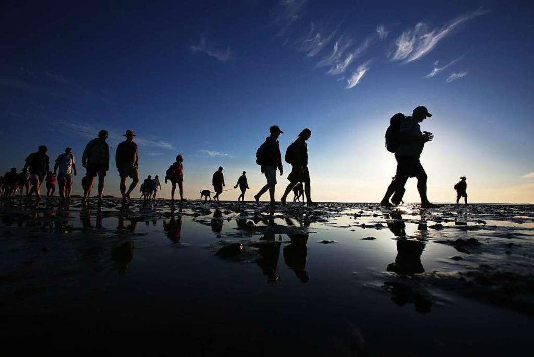 Eine Wattwanderung ist einer der Höhepunkte eines Nordsee-Urlaubs.  | Foto: Christian Charisius (dpa)