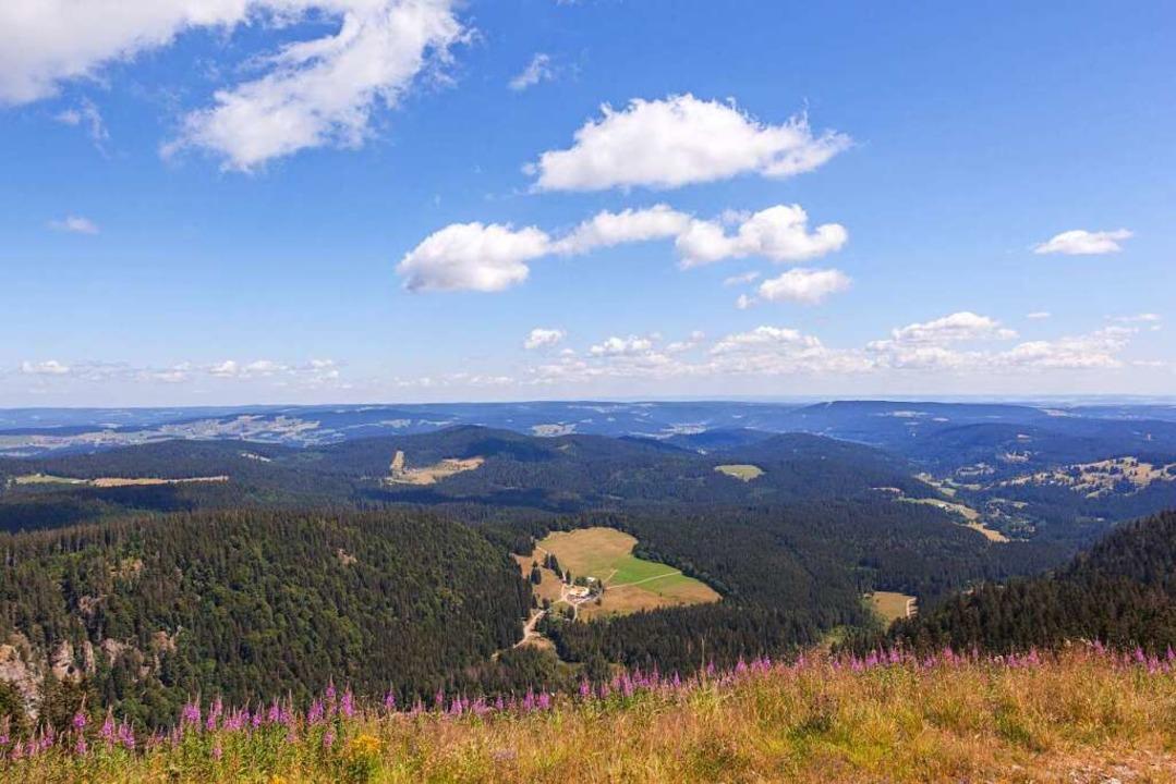 Der Blick vom Feldberg ist nicht ohne Grund berühmt.  | Foto: Hochschwarzwald Tourismus GmbH