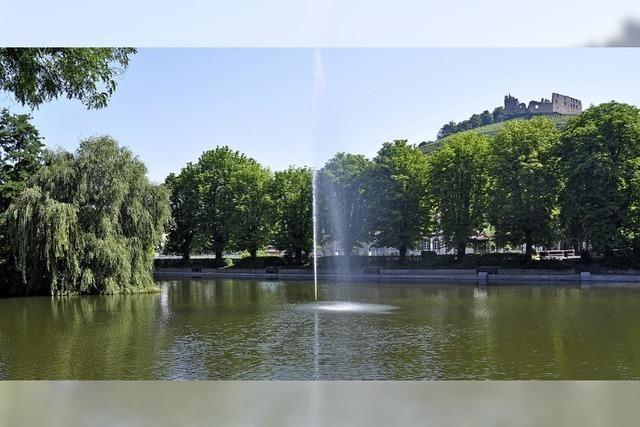Nicht nur ruhige Zeiten am Staufener Stadtsee