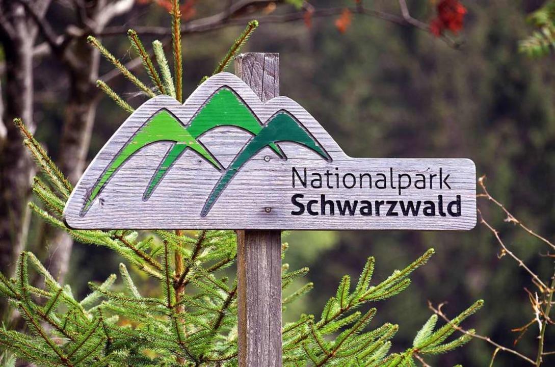Fünf Jahre gibt es den Nationalpark mittlerweile.    Foto: Uli Deck (dpa)