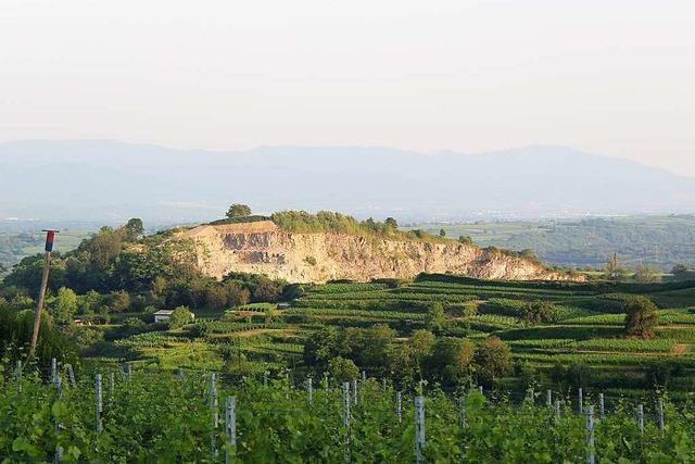 Steinbruchgegner sehen sich nach Entscheidung des Regierungspräsidiums bestätigt