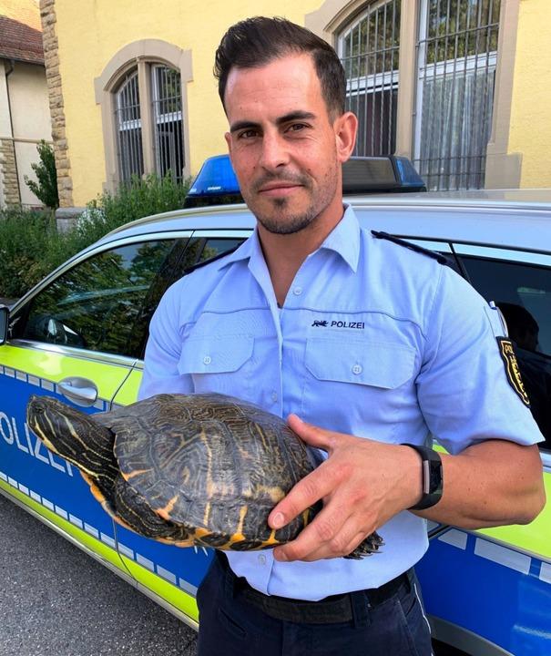Die Polizei in Müllheim hat eine Schildkröte gefunden.  | Foto: Polizeirevier Müllheim