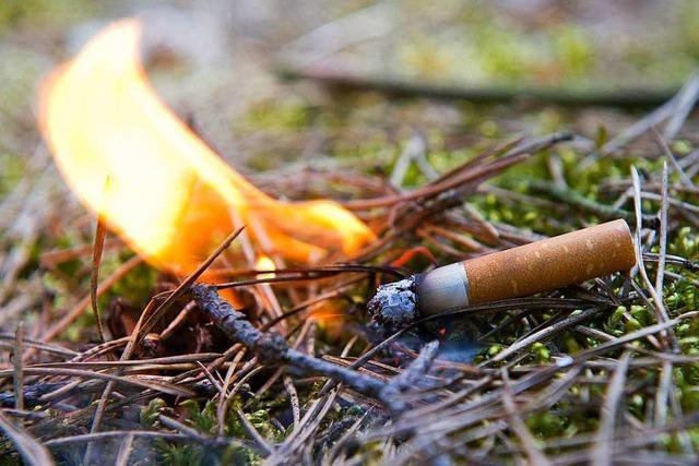 Meteorologen erwarten heißes Wochenende – hohe Waldbrandgefahr