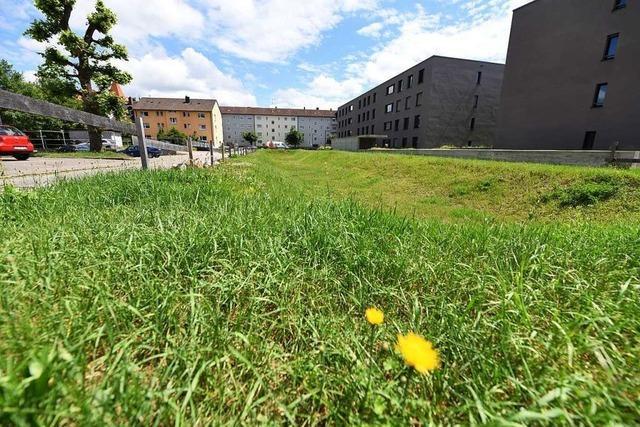 Der Vorsitzende der Baugenossenschaft Lörrach bekräftigt seine Kritik an der Stadt
