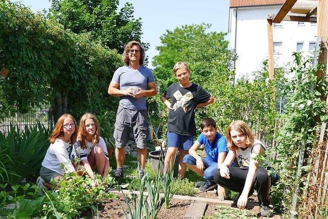 Die Gemeinschaftsschule in Weil am Rhein hat eine eigene Gartenklasse