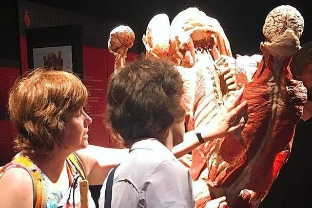 Tote zum Anfassen – Blinde besuchen die Körperwelten-Ausstellung