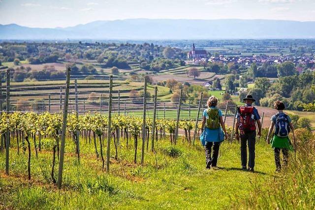 Auch 2018 blieben in Ettenheim mehr Gäste über Nacht