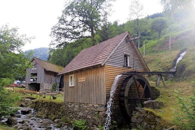 Zeitreisen-Tour ins Ettersbachtal