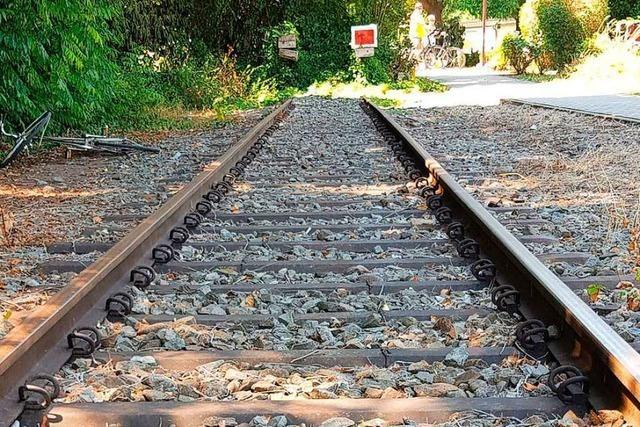 Der Bund soll die Bahnlinie Freiburg-Colmar finanzieren