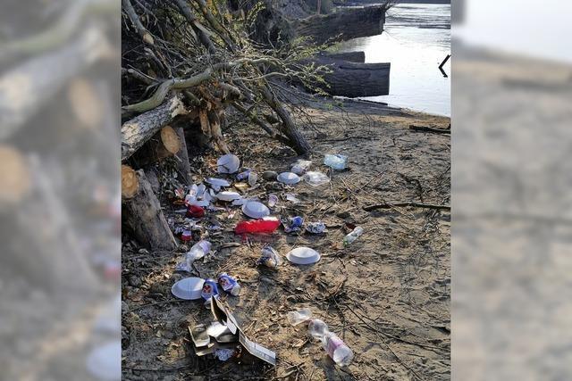Welche Auswirkungen hat Mikroplastik auf das Ökosystem Rhein?