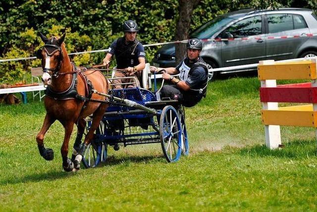 Fabian Gänshirt ist wieder deutscher Meister mit dem Pony-Einspänner
