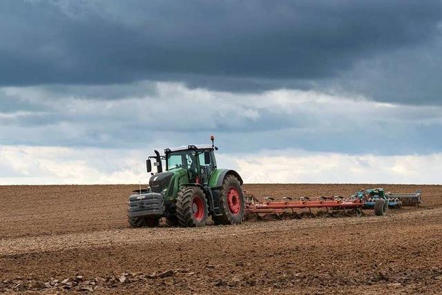Hoher Siedlungsdruck und der Klimawandel machen Landwirten im Kreis Lörrach zu schaffen