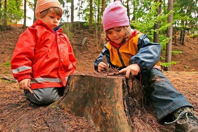 In Steinen und Maulburg schreiten Ideen für Waldkindergärten voran