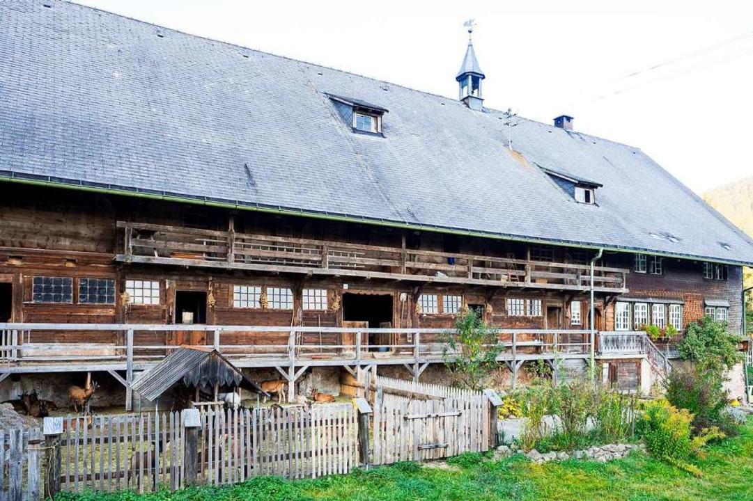 Der alte Windberghof im Hochschwarzwald  | Foto: Patrick Kunkel