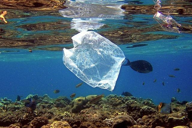 Unsere Welt versinkt im Plastikmüll