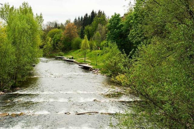 Die Ursache der Verschmutzung des Flusses Wiese bei Lörrach ist noch unklar