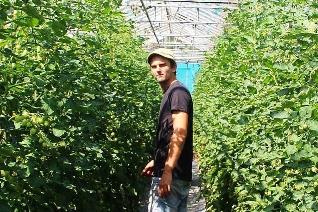 Netzwerk will Bio-Produkte vom Land in der Stadt verkaufen